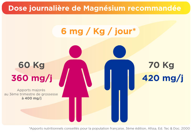 dose-journaliere-recommandee-magnesium